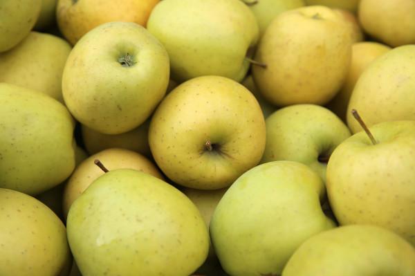 Pommes BIO Golden